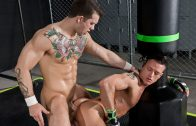 The Trainer – Sebastian Kross & Rex Cameron