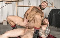 The Lumber Yard – Jordan Levine & Teddy Bear