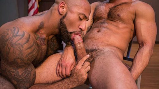 Vice - Daymin Voss & Damian Taylor